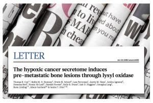 Nature Hypoxic Secretome Bisphosphonates LOX Cox