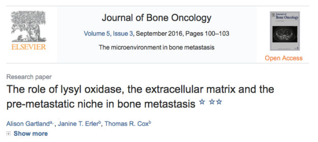 The role of lysyl oxidase, the extracellular matrix and the pre-metastatic niche in bone metastasis