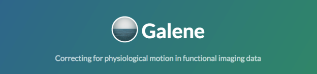 Galene Motion Correction Software