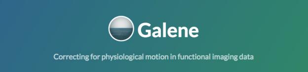 Galene Motion Correction Software